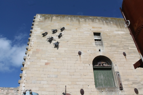 Flies invade Steampunk HQ Oamaru
