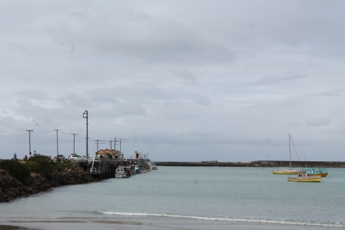 Oamaru seaport