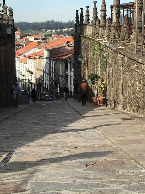 The slope to La Compostela
