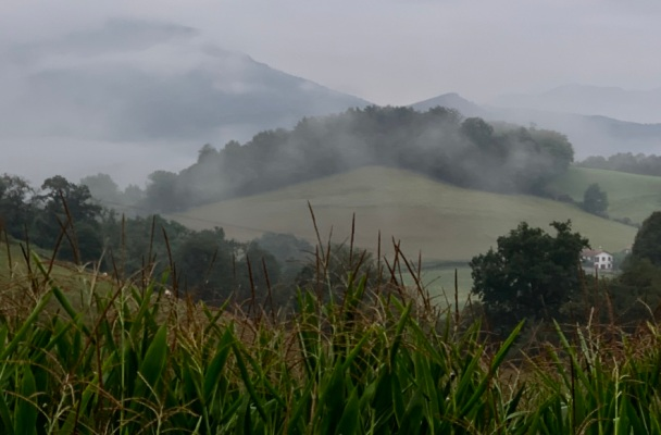 Mists hanging over Pryennes